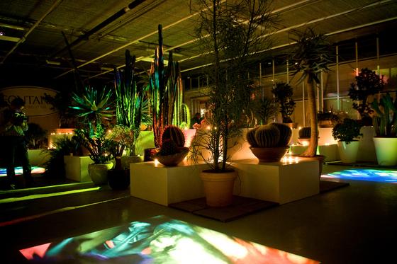 CONVERSAZIONE IN VERDE_LA SERRA OSCURA 2009_ 1