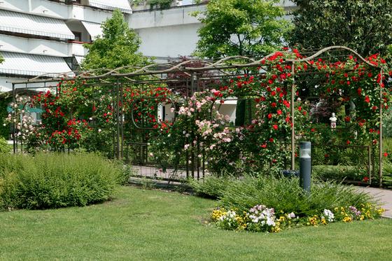 giardini pubblici-aziendali-04