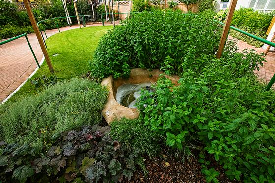 Giardini riabilitativi_11