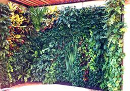 Vertical garden jacuzzi