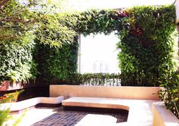 Vertical garden window